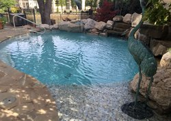 Gunite Pool #016 by Pool And Patio